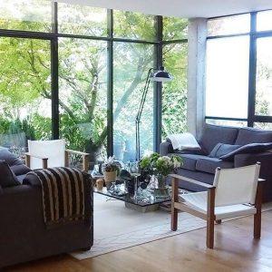salon-vue-nature-baie-vitree